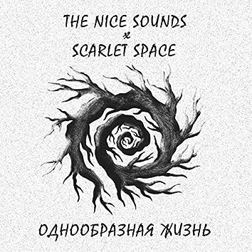 Однообразная жизнь (Acoustic)