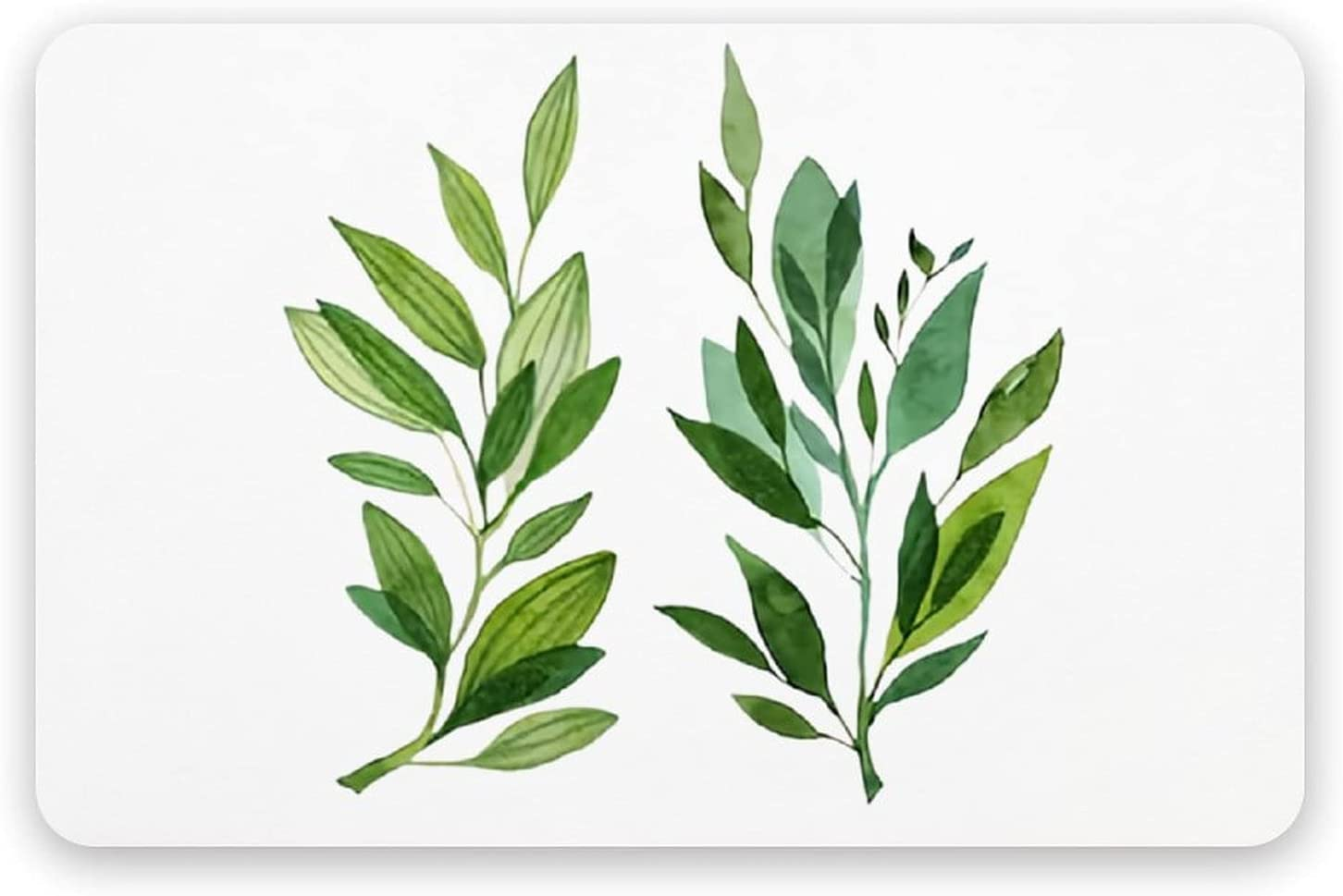 PotteLove Set Watercolor Branch Now free shipping Green - Diatomaceous Eart Leaves shipfree