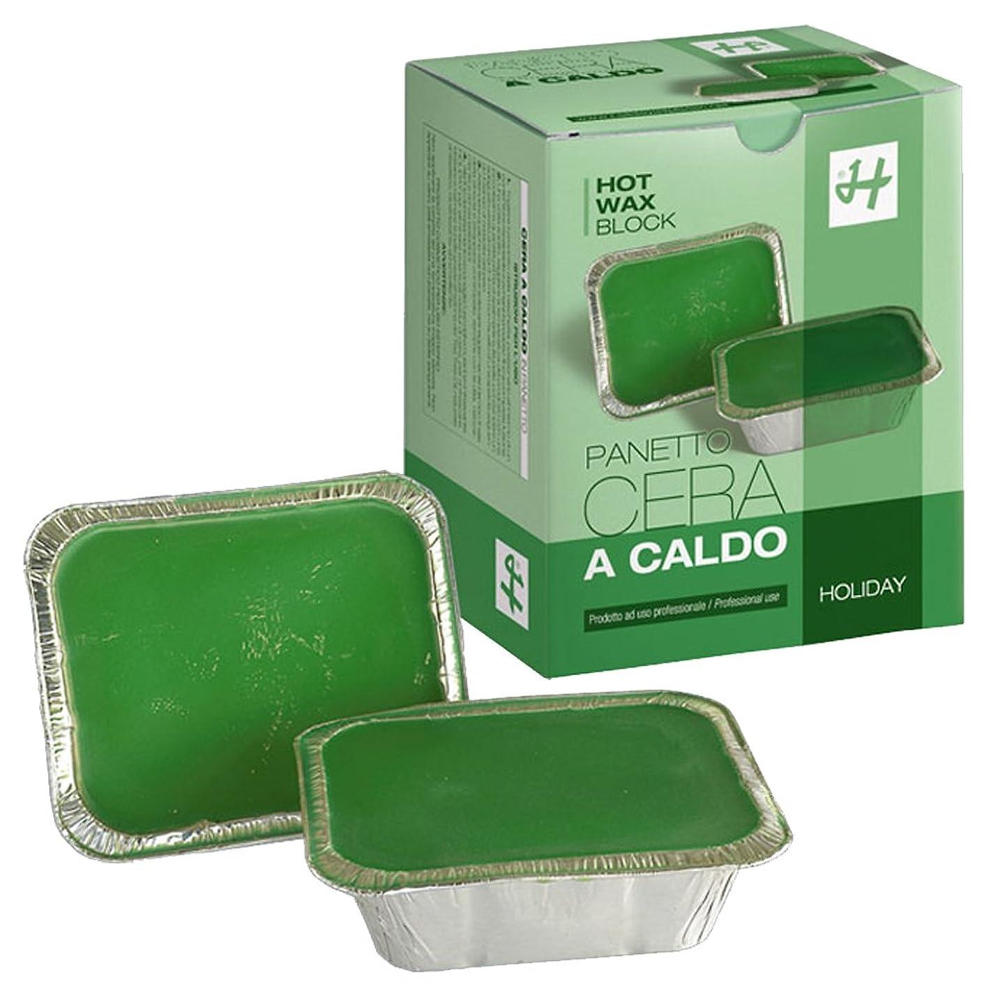 洗う死すべき増強するHOLIDAY JAPAN (ホリデイジャパン) ホットワックス?グリーン 500g×2個 ハードワックス ブロックワックス イタリア製 ブラジリアンワックス WAX