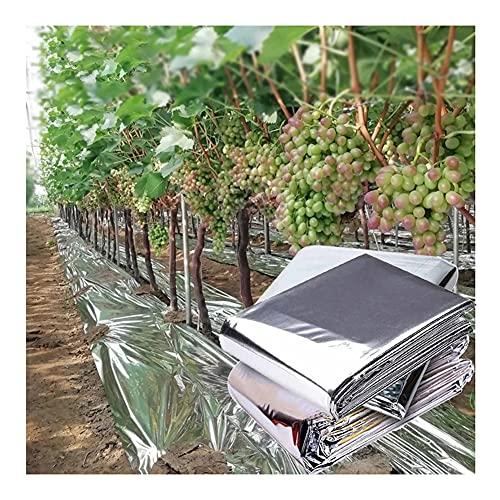 Pflanze Reflektierender Film, Garten Abdeckblätter, Beidseitig Aluminisiert Mylar Film Undurchsichtig Steigern Sie Das Pflanzenwachstum Für Gewächshaus Obstbäume ( Color : Silver , Size : 1.5x150m )