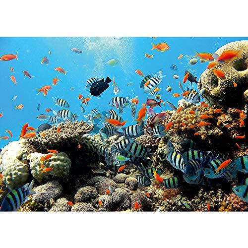 Vlies Fototapete PREMIUM PLUS Wand Foto Tapete Wand Bild Vliestapete - Unterwasser Aquarium Fische Korallen Meer - no. 1922, Größe:254x184cm Vlies