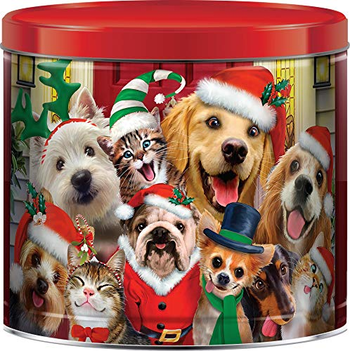 Silly Christmas Pets Assorted Holiday Popcorn Tin - 1lb 6oz (Caramel, Cheddar Cheese & Butter Flavored)