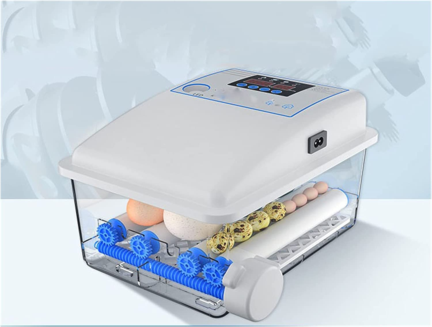 Automatic Egg Incubator Product 64 Small Fully H Dedication