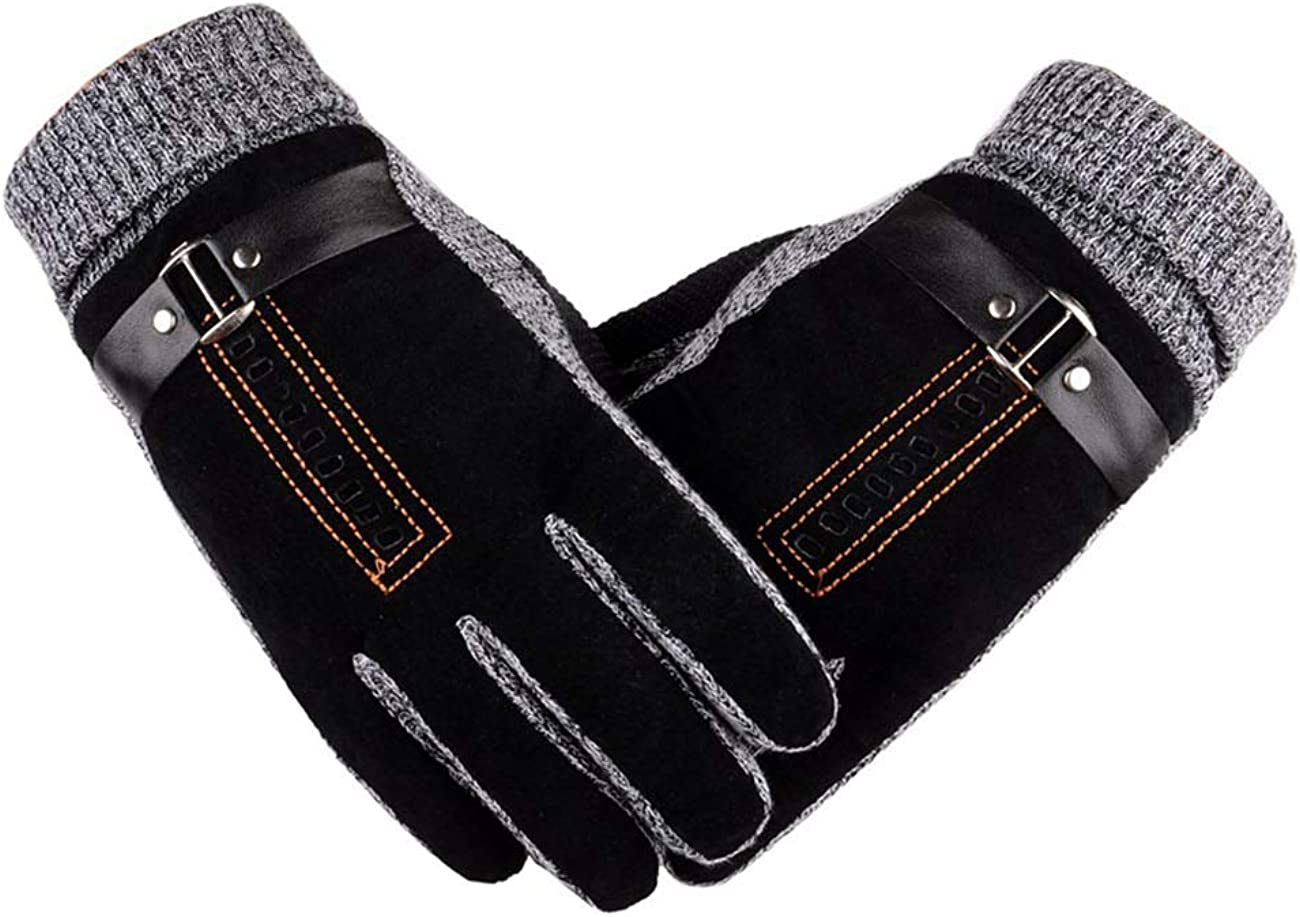 Men's Cold Weather Driving Suede Leather Mitten Handwear Windproof Winter Touch Screen Lined Leather Gloves