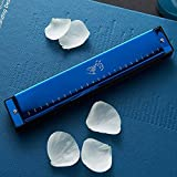 PNLD Mundharmonika, Anfänger empfehlen 10-Loch-C-Profi-Mundharmonika for Erwachsene Schüler. (Farbe : Blau)