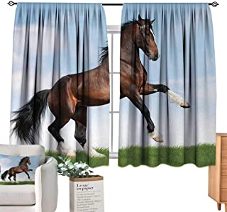 Warm Family Horses Fashionable Curtains Bay Horse Pacing on The Grass Energetic Noble Character of The Nature Concept for Living, Dining, Bedroom (Pair) 63
