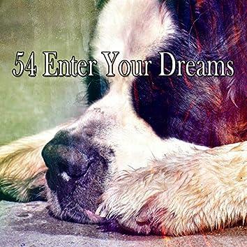 54 Enter Your Dreams