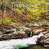 Tennessee Wild & Scenic 2022 12 x 12 Inch Monthly Square Wall Calendar, USA United States of America Southeast State Nature