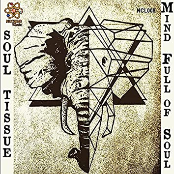 Mind Full of Soul