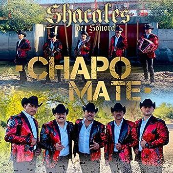 Chapo Mate