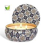Caja de regalo de vela de citronela Vela de cera de soja natural, 14 oz, 25-30 horas de tiempo de combustión, vela de citronela al aire libre, interior, jardín, viaje (set2)