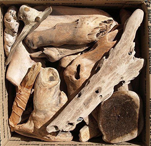 Driftwood - All Natural - Pacific Northwest Ocean Beaches - Each Piece Unique - Crafters Bonanza - Priority Shipping U.S.A. Large Box