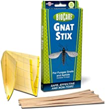 BioCare Gnat Stix Indoor Traps for Fungus Gnats and Aphids, Nontoxic and Pesticide-Free, Made in USA, 12 Count - S5333