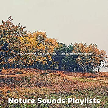 (Koto, Shakuhachi and Guitar Solo) Music for Relaxing in Nature