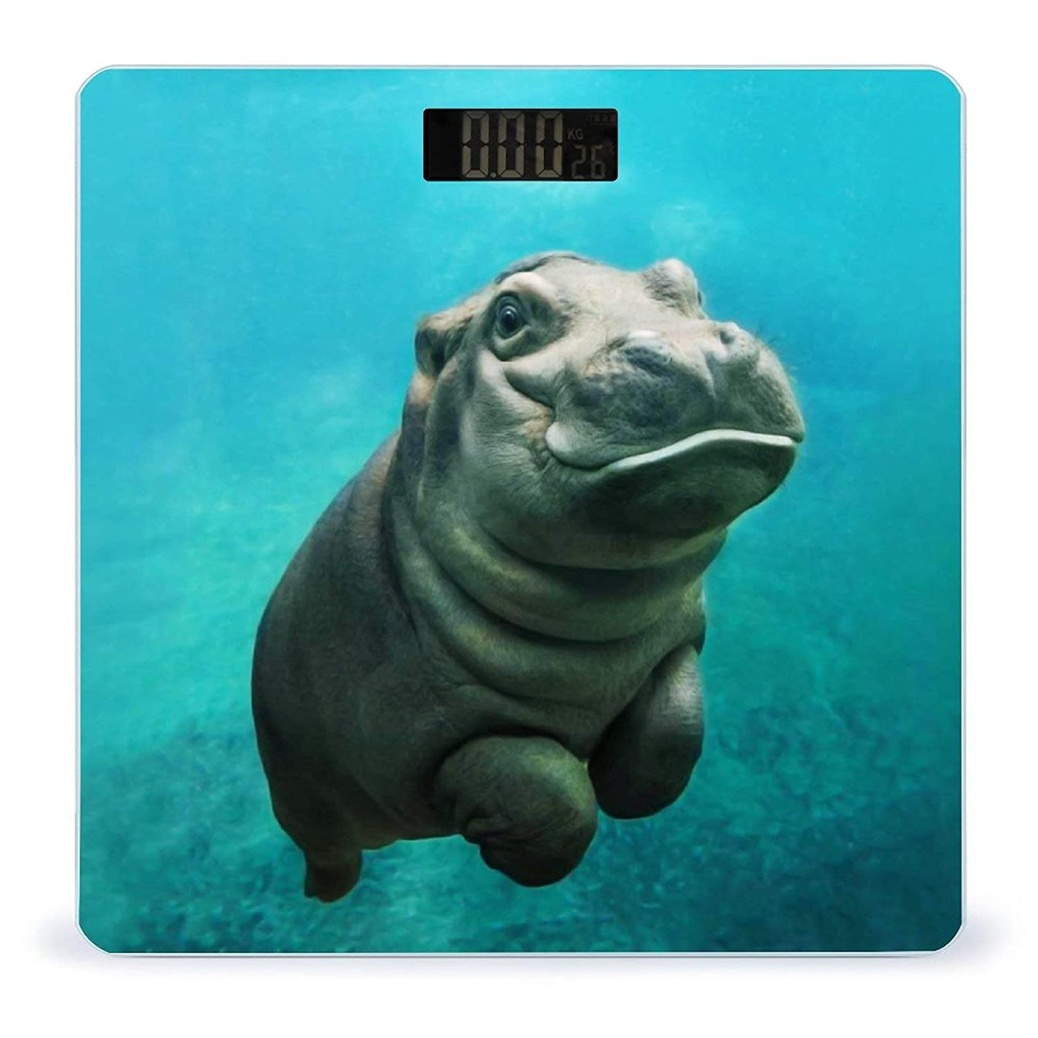 Funny Hippo FoldableWeight Raleigh Mall Scale San Jose Mall Battery-Powered Di Digital Body