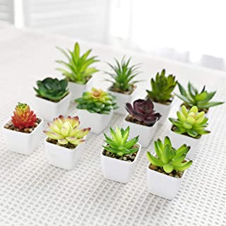 Luyue Artificial Succulent Plants with Pot Realistic Fake Potted Succulents Mini Faux Greenery for Home Office Decor (12 P...