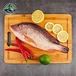 The Fish Farmer Red Snapper, 500 g- Chilled