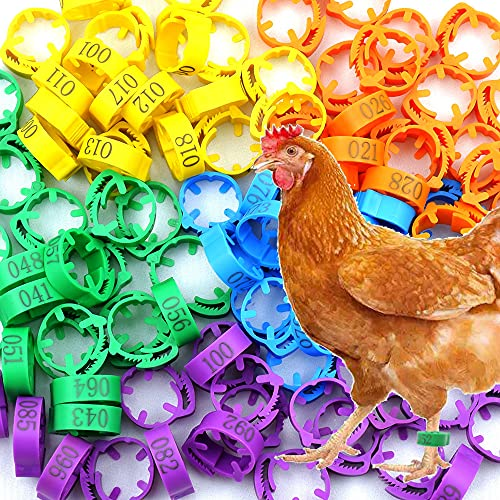 100 Pcs Chicken Leg Rings with Colorful Numbered Chicken Identification Leg Bands Poultry Leg Bands Clip on Leg Rings for Pigeons Lovebird Coturnix Quail Chicken Goose Gamefowl
