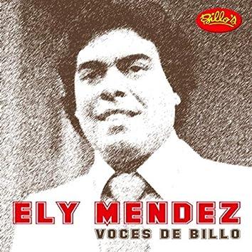 Voces de Billo - Ely Mendez