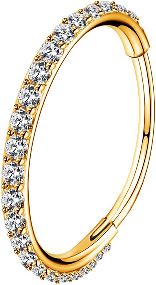 OUFER Gold Hinged Segment Earring Hoop 16G Stainless Steel with Cartilage Earrings Clear CZ Paved Tragus Helix Earrings Cartilage Earring Septum Nose Ring Hoop