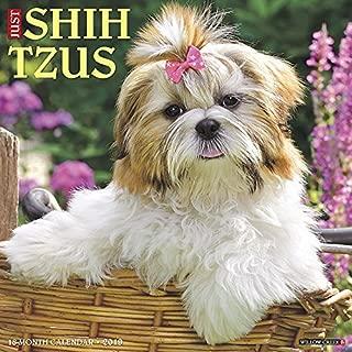 Just Shih Tzus 2019 Wall Calendar (Dog Breed Calendar)