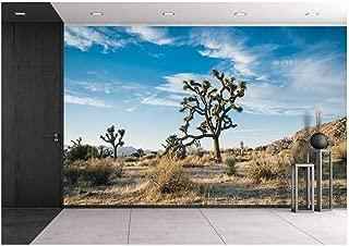 Best cactus desert wallpaper Reviews