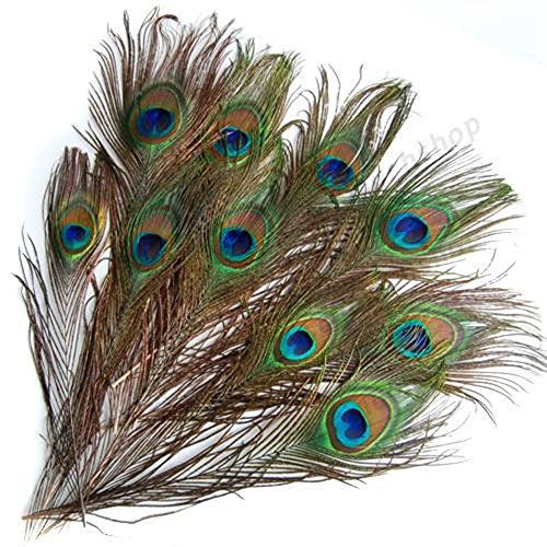 WHK 10 Pezzi di Piume d'occhio di Pavone Naturali, bellissime Piume d'occhio di Coda Verde per Vestiti, Decalcomanie, Bouquet, Feste di Matrimonio