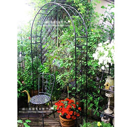 Arche Jardin en Métal pour Plantes Grimpantes, Pergola Fer Forge, Rosiers Arcade de Soutien, 155cmx24cmx240cm (Noir)