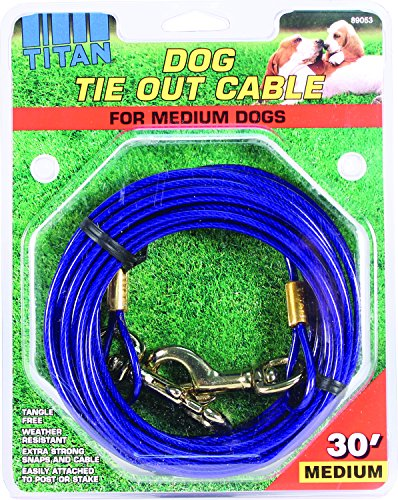 C Cable Tieout Medium 30ft