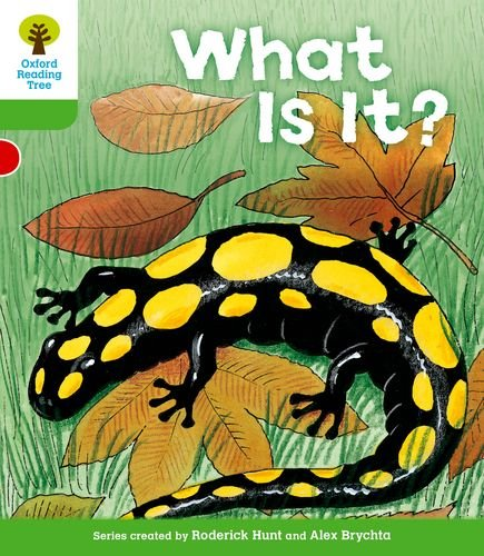Oxford Reading Tree: Level 2: More Patterned Stories A: What Is It?の詳細を見る