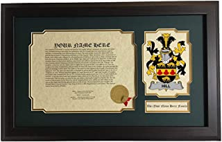 Hill - Coat of Arms and Last Name History, 14x22 Inches Matted and Framed
