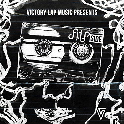 The Best of Flipside, Vol. 2