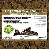 Teichpoint - Mangime con aggiunta di alghe per pesce gatto e per tutti i pesci da fondo che si nutrono di piante e pesci ornamentali – sacchetto da 1 litro