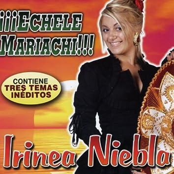 ¡¡¡Echele Mariachi!!!