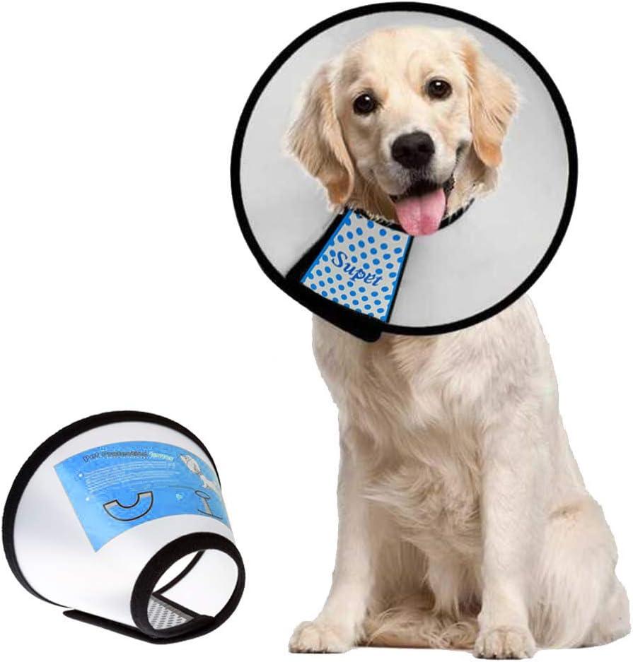 61KBlgVrZLL. AC SL1000 Inflatable Dog Collar Reviews