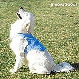 InnovaGoods IG814007 Erfrischende Weste für große Haustiere, L, Blau