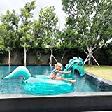 New Pool Floats - Best Reviews Guide