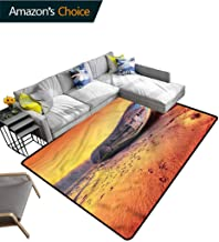 TableCoversHome Shipwreck Ikat Area Rug Entryway, Rusty Abandoned Boat Pattern Printing Rugs, Durable Rugs - Living, Dinning, Office, Rooms & Bedrrom, Hallway Carpet (3'x 5')