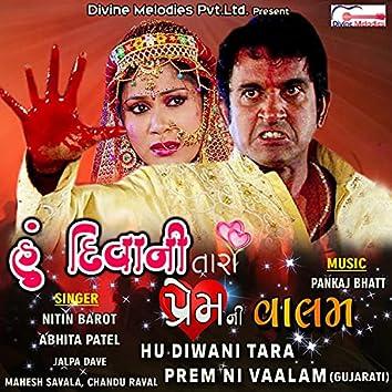 Hu Diwani Tara Prem Ni Vaalam