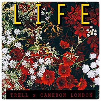 Life (feat. Cameron London)