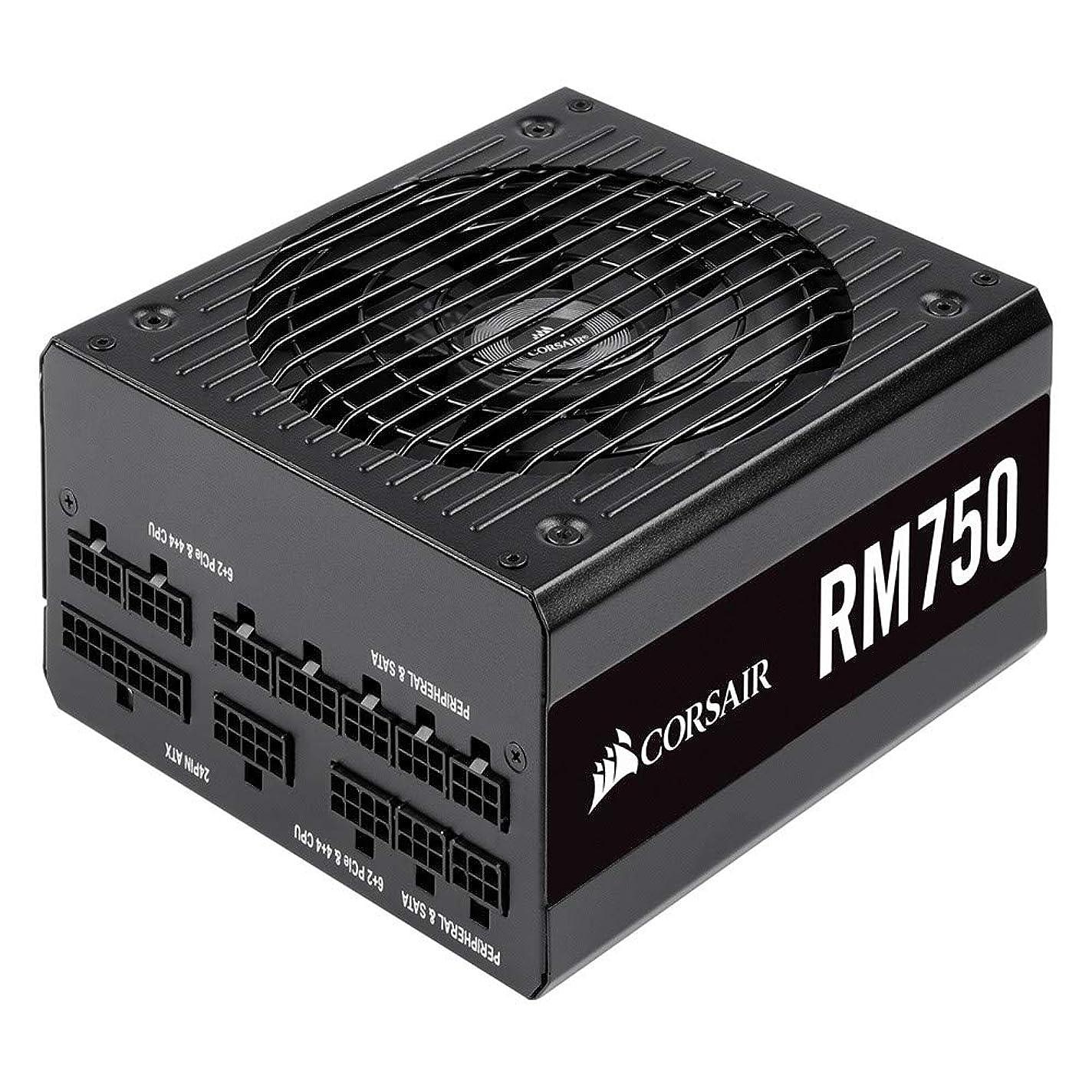 争う予定勢いCorsair RM750-2019- 750W PC電源ユニット 80PLUS GOLD PS862 CP-9020195-JP