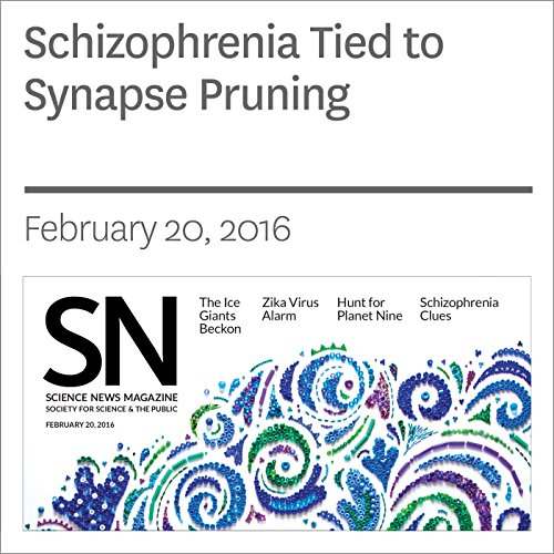 Schizophrenia Tied to Synapse Pruning audiobook cover art