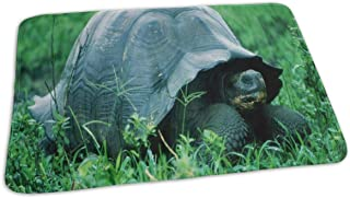 Changing Pad Turtle in The Jungle Baby Diaper Incontinence Pad Mat Designer Kids Mattress Cover Sheet for Any Places for Home Travel Bed Play Stroller Crib Car
