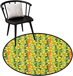 Area Rugs Round Circular Carpet Thick Daffodil,Modern Daffodils Illustration Striped Setting Vitality Inner Focus Herbal Theme, Green Yellow,Machine Washable Round Area Rug Non-Slip Mats 20