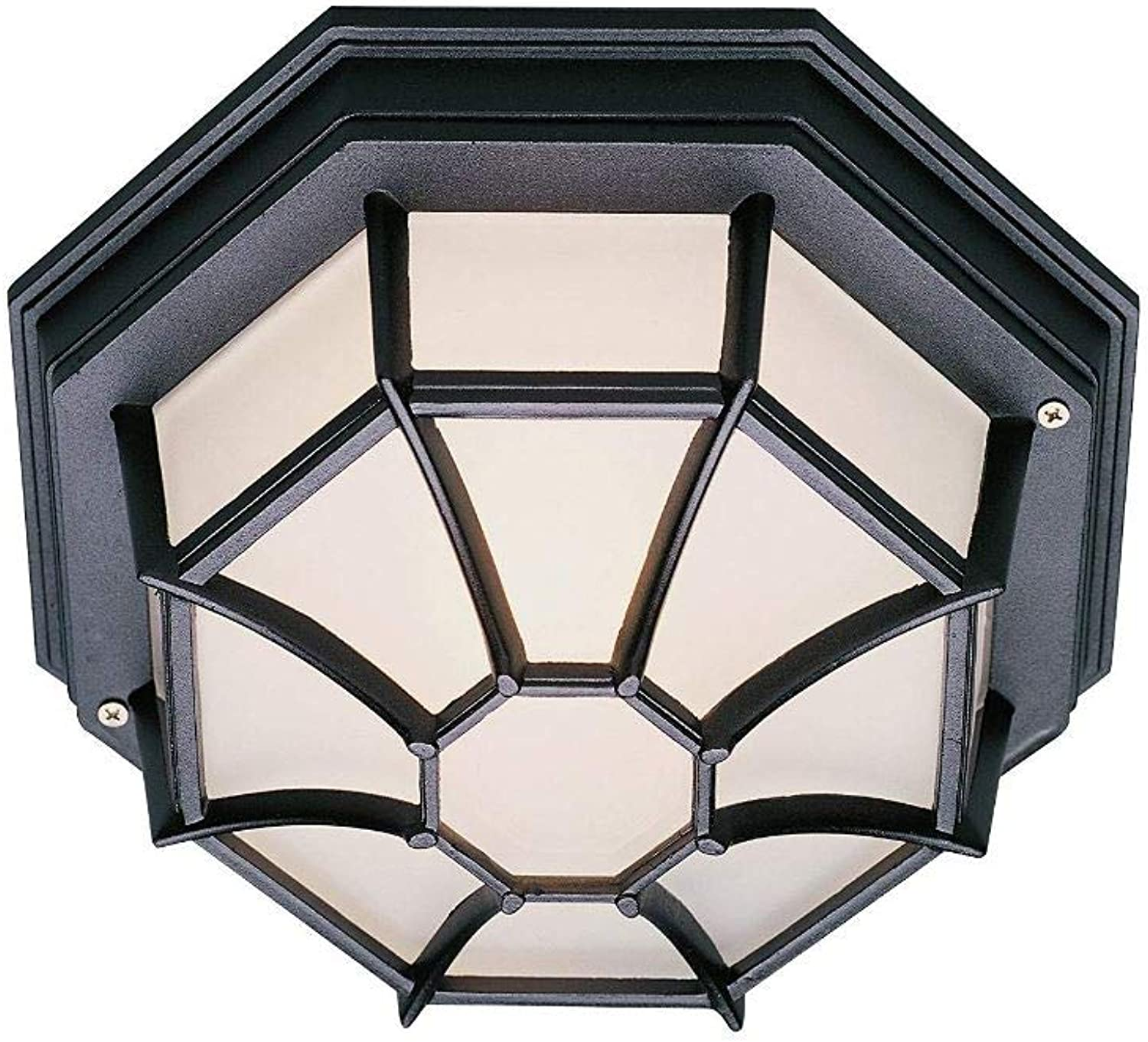 Green Beam Outdoor LED Ceiling Light Fixture, Porch Light Fixture, Patio Light Fixture, Outdoor Flush Mount Ceiling Light Fixture, 17W, 4000K Natural Light, Black Finish, 10.5