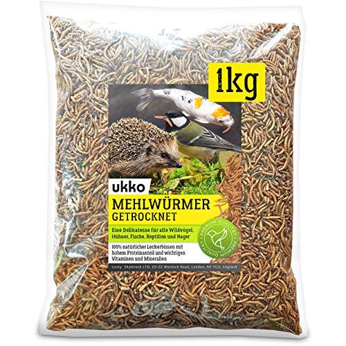 Ukko Mehlwürmer getrocknet 1kg, optimales Zusatz Futter für Reptilien, Fische, Vögel & Co.