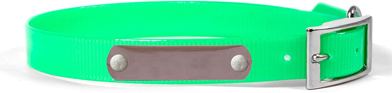 Personalized Waterproof Dog Collar with Name Plate for Medium Dogs (Size  20) (Silver Nameplate, Light Green)