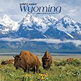 Wyoming Wild & Scenic 2020 12 x 12 Inch Monthly Square Wall Calendar, USA United States of America Midwest State Nature (English, Spanish and French Edition)
