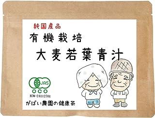がばい農園 有機栽培 大麦若葉青汁 100g オーガニック お茶 ノンカフェイン 健康茶 ティーバッグ