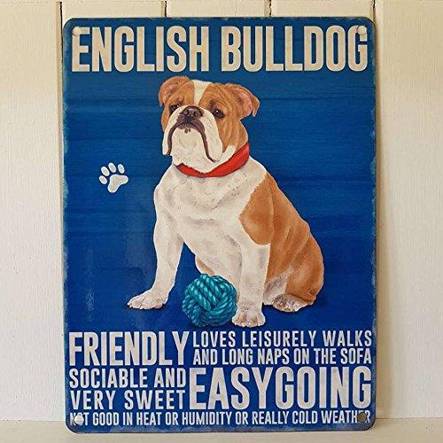 Englische Bulldogge Blechschild, freundliche und gemütliche Hundeplakette